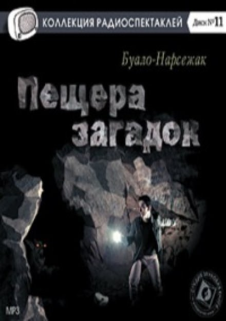 Пещера загадок - Буало-Нарсежак