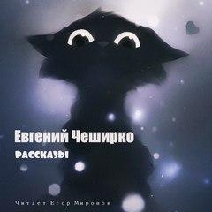 Рассказы - Евгений ЧеширКо