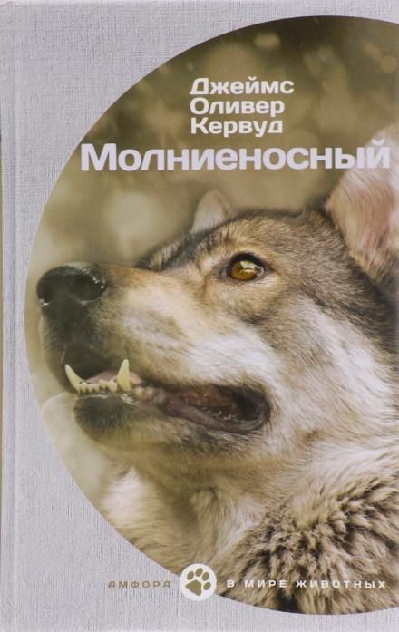 Аудиокнига Молниеносный