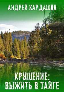 Крушение: Выжить в Тайге - Андрей Кардашов
