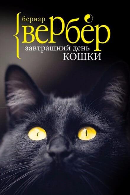 Аудиокнига Завтрашний день кошки