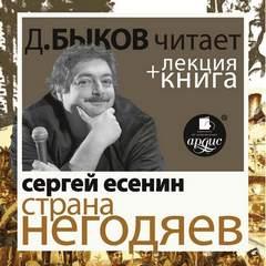 Аудиокнига Страна негодяев